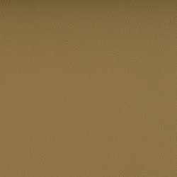 VALENCIA™ CHAMPAGNE | Tejidos tapicerías | SPRADLING