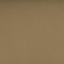 VALENCIA™ GOLD | Upholstery fabrics | SPRADLING