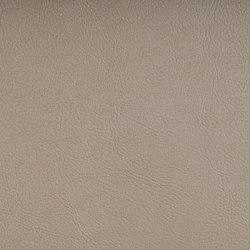 VALENCIA™ IVORY | Upholstery fabrics | SPRADLING
