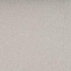 VALENCIA™ PEARLESSENCE | Upholstery fabrics | SPRADLING