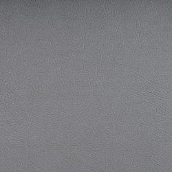 VALENCIA™ C5 SILVER | Upholstery fabrics | SPRADLING