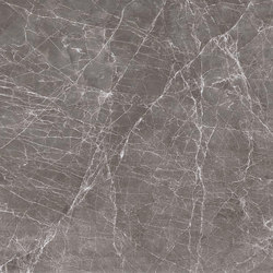 Grey | Claros Grey (dark) | Natural stone panels | Gani Marble Tiles