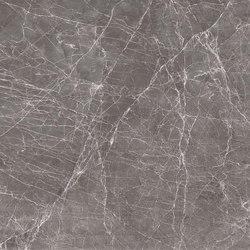 Grey | Claros Grey (dark) | Panneaux en pierre naturelle | Gani Marble Tiles