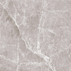 Grey | Claros Grey (light) | Panneaux en pierre naturelle | Gani Marble Tiles