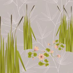 flora & fauna | canneto | Arte | N.O.W. Edizioni