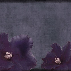 concrete | flora | Arte | N.O.W. Edizioni