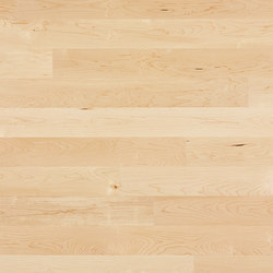 Cleverpark Maple canadian Crema 14 | Wood flooring | Bauwerk Parkett