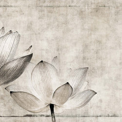canvas | lotus | Wall art / Murals | N.O.W. Edizioni