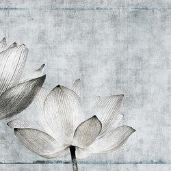 canvas | lotus | Arte | N.O.W. Edizioni