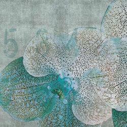 concrete | orchid | Wall art / Murals | N.O.W. Edizioni