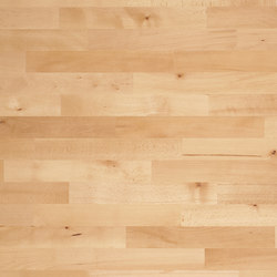 Monopark Beech unsteamed 24 | Wood flooring | Bauwerk Parkett