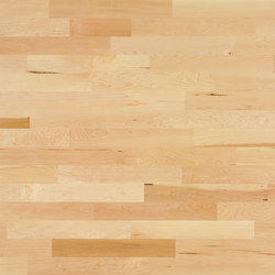 Monopark Maple canadian 15 | Wood flooring | Bauwerk Parkett
