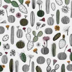 Cactofilia | Wall coverings / wallpapers | WallPepper