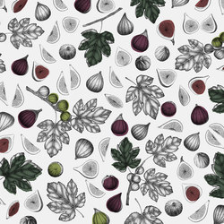 Ficus Carica | Wall coverings / wallpapers | WallPepper
