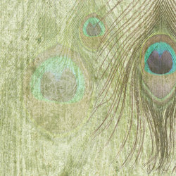 PEACOCK FEATHER | Wall coverings / wallpapers | WallPepper