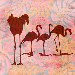 Wild Flamingos   Wall coverings / wallpapers   WallPepper