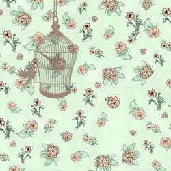 The open cage | Wall coverings / wallpapers | WallPepper