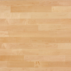 Unopark Maple canadian 13 | Wood flooring | Bauwerk Parkett