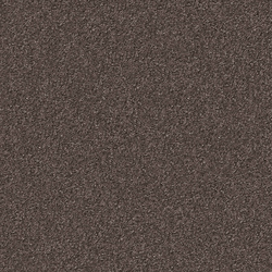 Silky Seal 1233 Taupe | Rugs | OBJECT CARPET