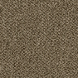 Allure 1002 Sandy | Wall-to-wall carpets | OBJECT CARPET