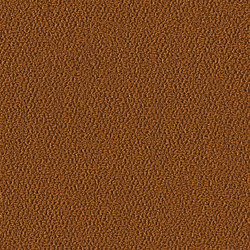 Allure 1003 Mai Tai | Wall-to-wall carpets | OBJECT CARPET