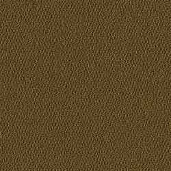 Allure 1004 Safari | Moquette | OBJECT CARPET