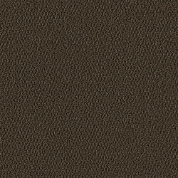 Allure 1008 Mocca | Wall-to-wall carpets | OBJECT CARPET