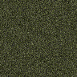 Fine 0806 Bonsai | Wall-to-wall carpets | OBJECT CARPET