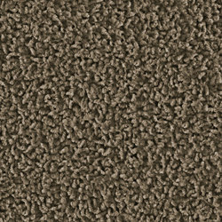 Frizzle 1406 Muscat | Wall-to-wall carpets | OBJECT CARPET