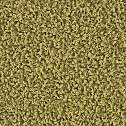 Frizzle 1409 Wasabi | Wall-to-wall carpets | OBJECT CARPET