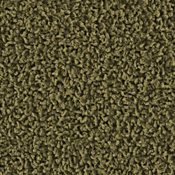 Frizzle 1410 Greentea | Wall-to-wall carpets | OBJECT CARPET