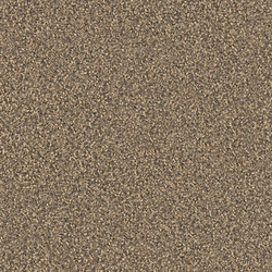 Gracce 1102 Muschel | Rugs | OBJECT CARPET