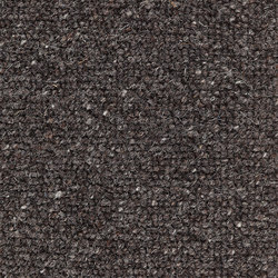 Livia | Cold Lava | Wall-to-wall carpets | Kasthall