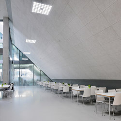 Acoustic ceiling systems   Ceiling