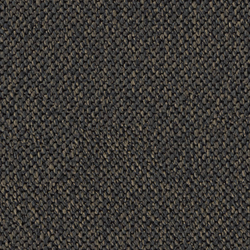Loop 0707 Salamander | Rugs | OBJECT CARPET