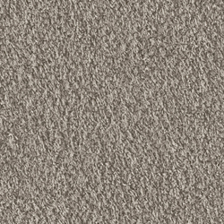Teddy 1002 Greige | Moquette | OBJECT CARPET