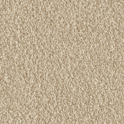 Teddy 1005 Sand | Moquette | OBJECT CARPET