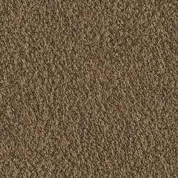 Teddy 1006 Brown Sugar | Moquette | OBJECT CARPET