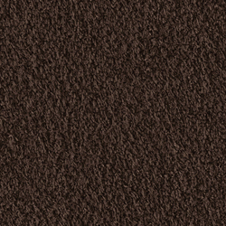 Teddy 1007 Maroon | Moquette | OBJECT CARPET