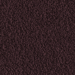 Teddy 1008 Wild Berry | Moquette | OBJECT CARPET