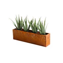 Plant | Maceteros | Svedholm Design