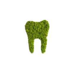 pictogram | reindeer moss tooth maygreen 30cm | Wall decoration | styleGREEN