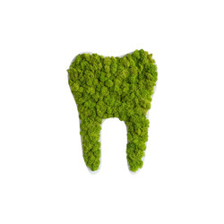 pictogram | reindeer moss tooth maygreen 60cm | Pictogramas | styleGREEN