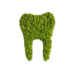 pictogram | reindeer moss tooth maygreen 80cm | Wall decoration | styleGREEN