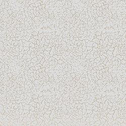 GF1.04 | Revestimientos de paredes / papeles pintados | YO2