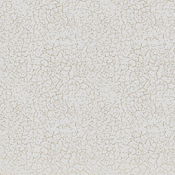 GF1.04 | Carta parati / tappezzeria | YO2