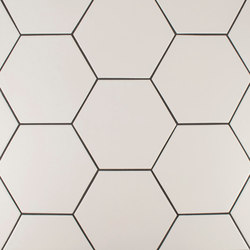 "8"" Hexagon 