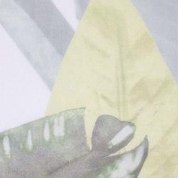 FANA - 0301 | Drapery fabrics | Création Baumann
