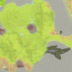 SERATA FIDELIA - 812 | Tessuti decorative | Création Baumann