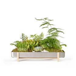 Greenery Flower Tray | Pflanzgefäße | Design House Stockholm